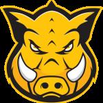 Group logo of Hog Technologies: Production