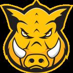 Group logo of Hog Technologies: Engineering