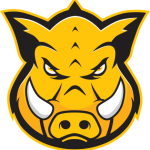 Group logo of Hog Technologies: Surface