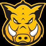 Group logo of Hog Technologies: Training