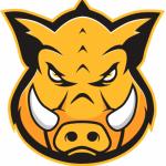 Group logo of Hog technologies- HR- Admin